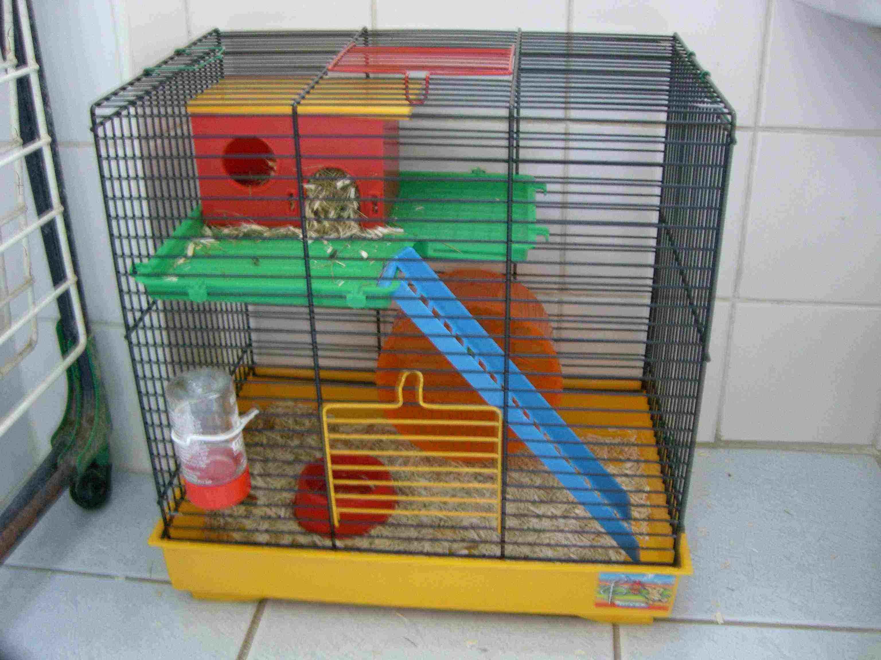 cage pour hamster. Black Bedroom Furniture Sets. Home Design Ideas